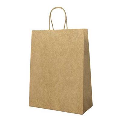 Χάρτινη Σακούλα Δώρου Με Στριφτό Χερούλι Κραφτ 22Υx18Πx8